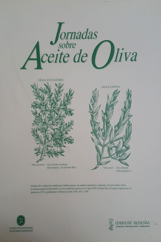 """Cap. """"Tecnología de Proceso"""". Jornadas sobre aceite de oliva. Funcación Valenciana de estudios avanzados. 2002."""