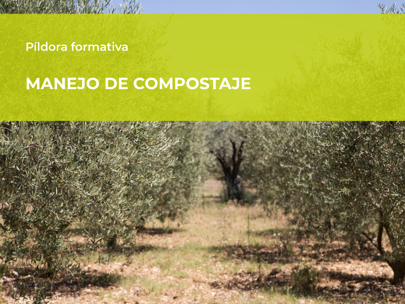 IADA Ingenieros participa en la charla formativa «Manejo de Compostaje»