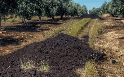 Compost de orujo: de residuo a subproducto